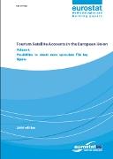 Tourism Satellite Accounts in the European Union - Volume 4