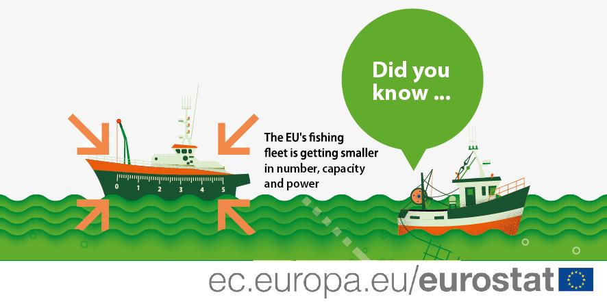 Infographic: EU fishing fleet