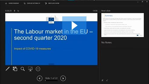 Webinar- The labour market in the EU the second quarter of 2020