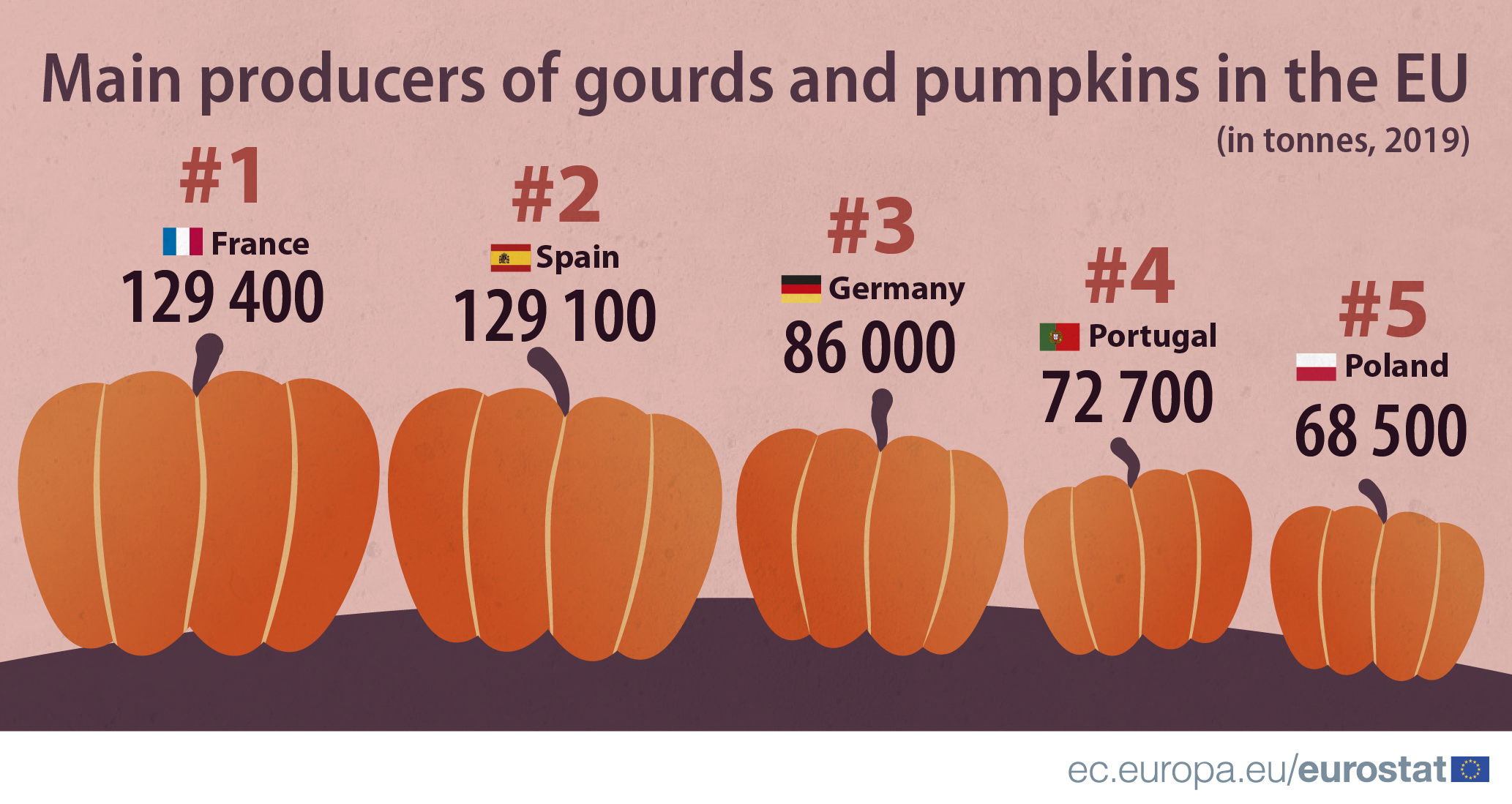 Infographic: Main producers of gourds and pumpkins