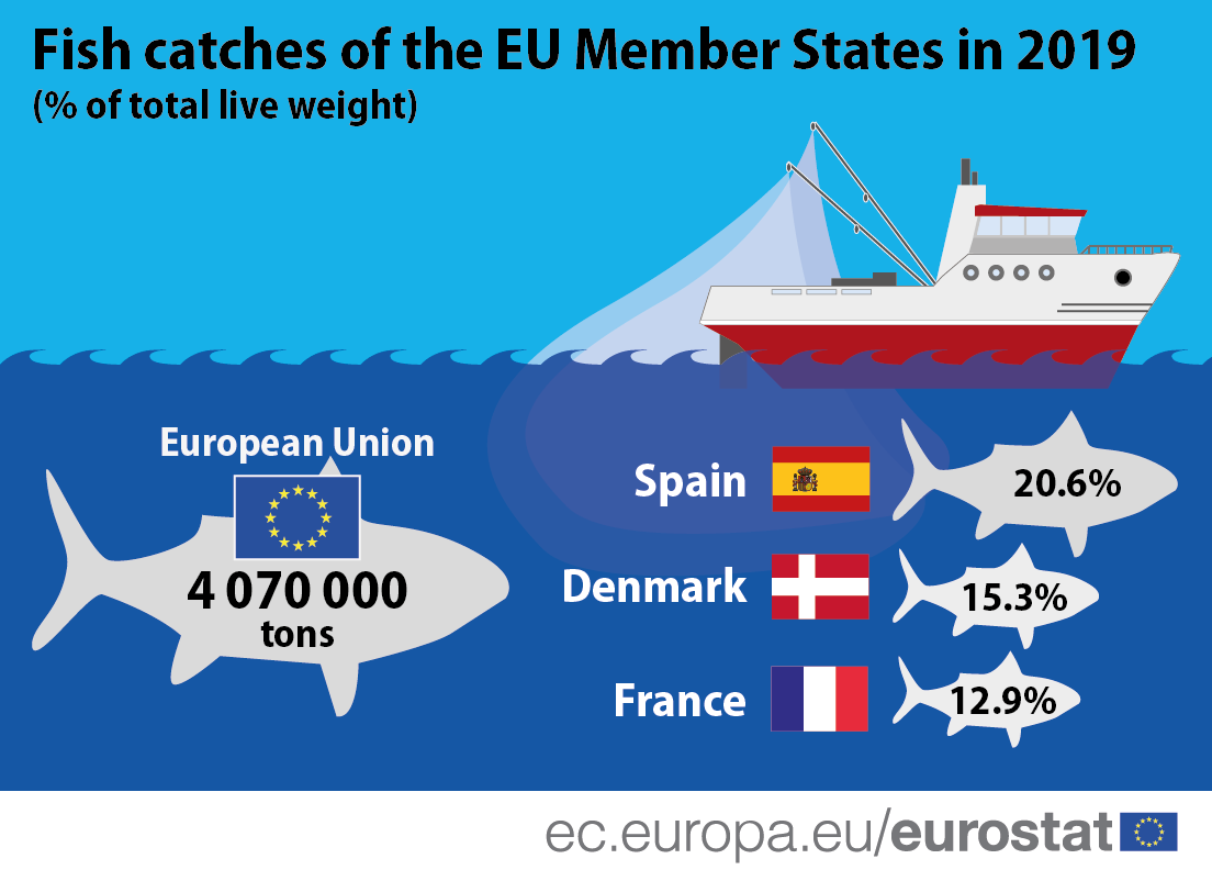 Infographic: Fish catches of the EU Member States in 2019