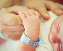 © ESB Professional / Shutterstock.com