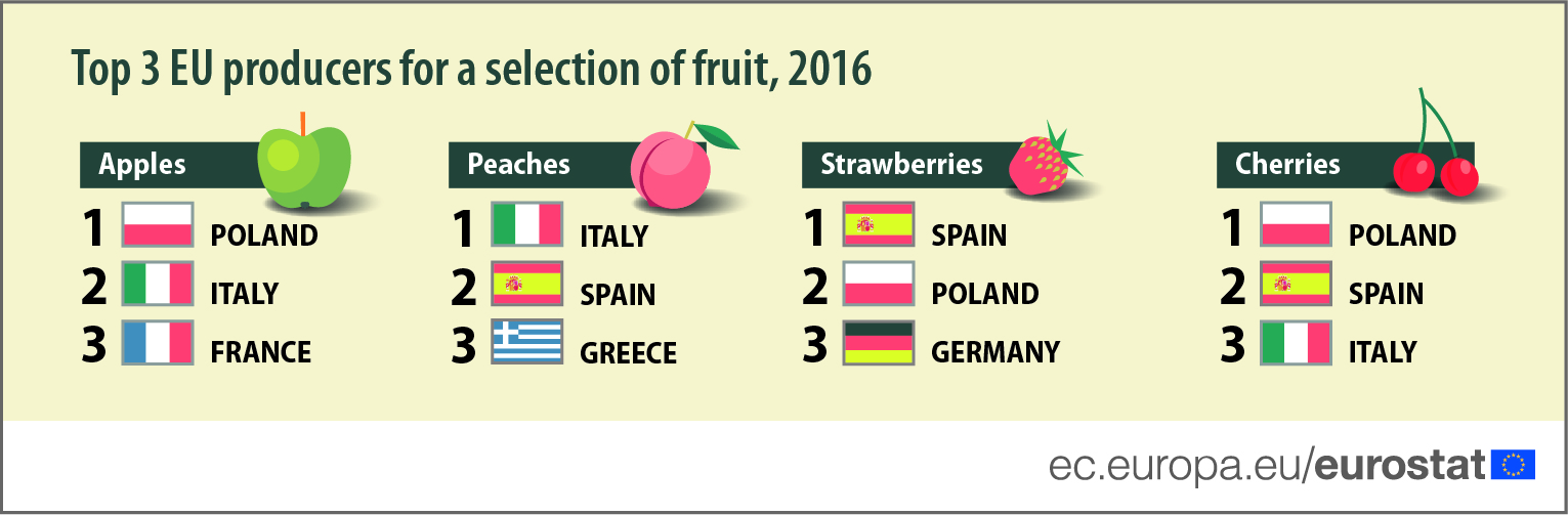 Top 3 EU producers for a selection of fruit, 2016