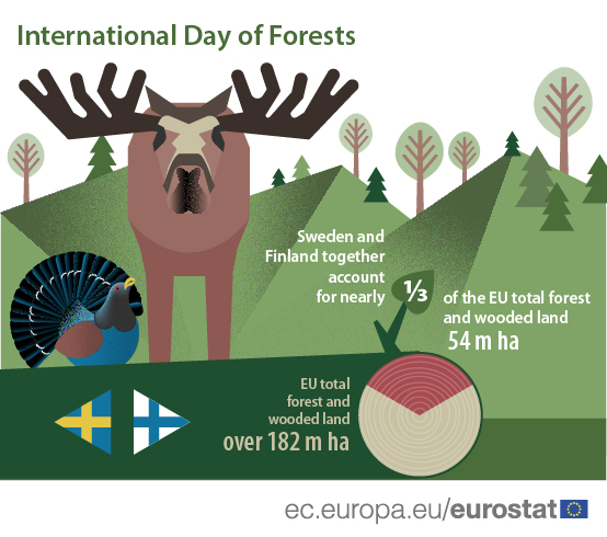 Infographics: International day of forests