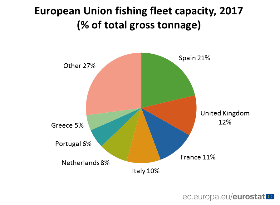 Pie chart: share of fishing fleet capacity by country, 2017