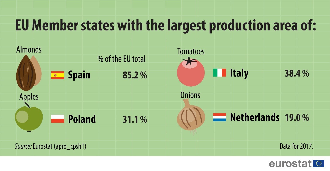 Infographic: EU Member States with the largest production area of selected fruits and vegetables