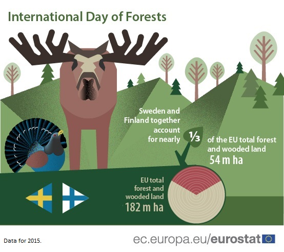 Infographic on EU forest area