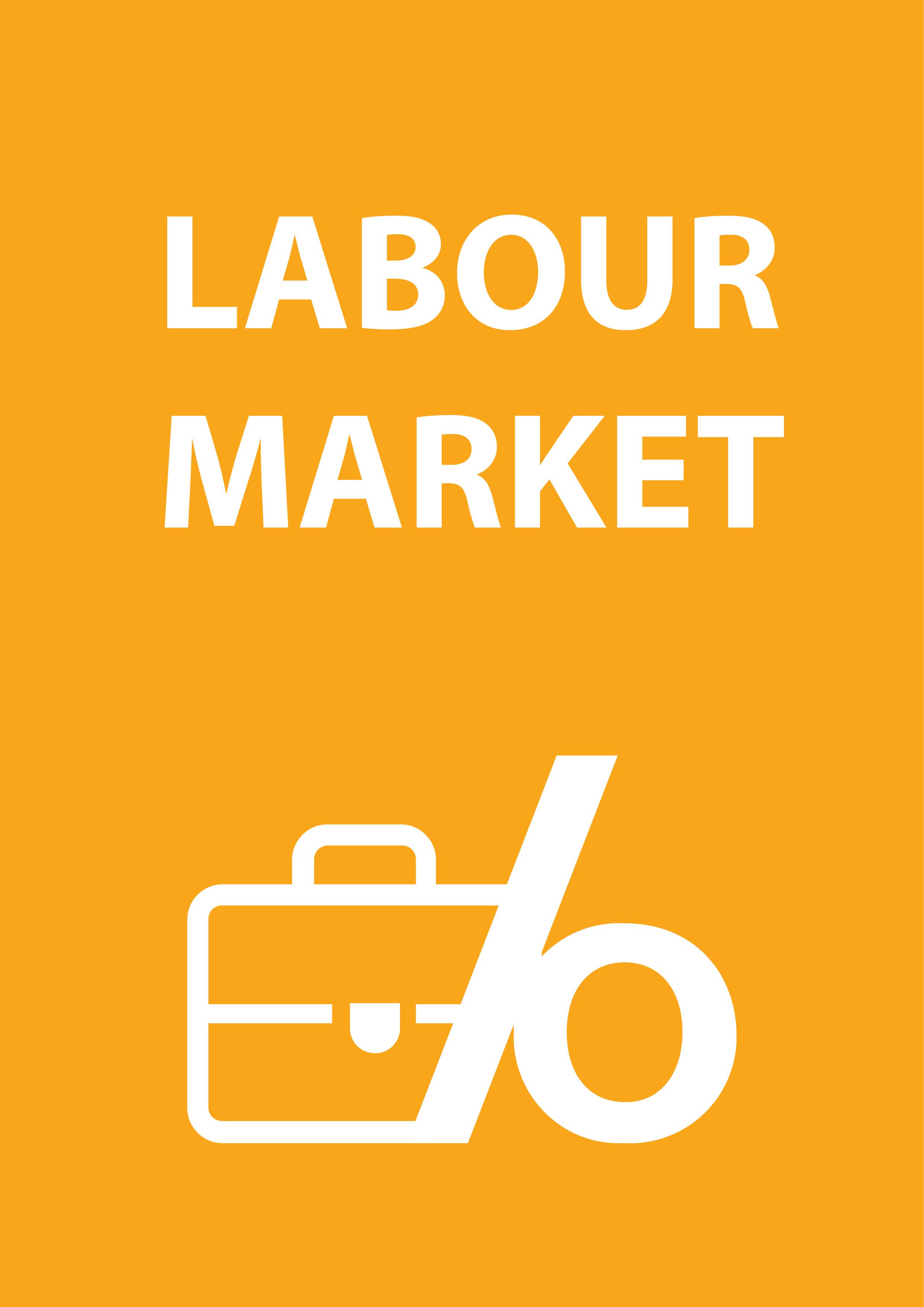 Statistics 4 beginners: Labour Market