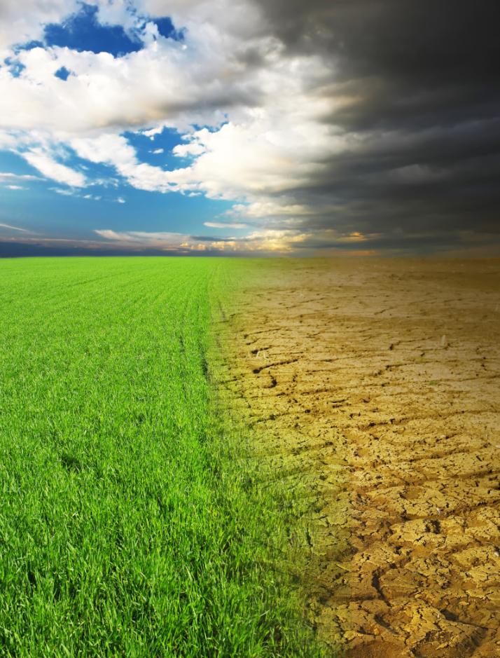 Climate change / © Shutterstock / Dudarev Mikhail