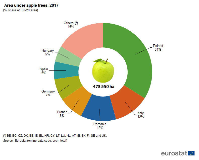 File:Area under apple trees, 2017 (% share of EU-28 area).png