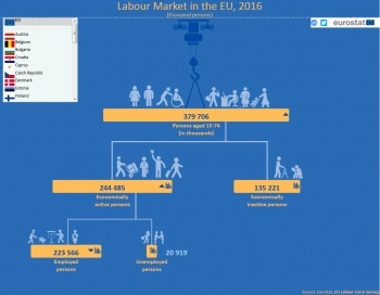 Infographic Labour Force Survey.jpg