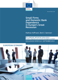 Small Firms and Domestic Bank Dependence in Europe's Great Recession