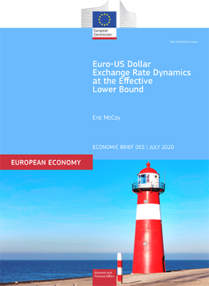 Euro-US Dollar Exchange Rate Dynamics at the Effective Lower Bound