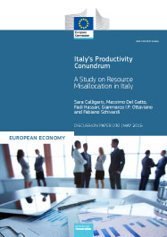 Italy's Productivity Conundrum. A Study on Resource Misallocation in Italy
