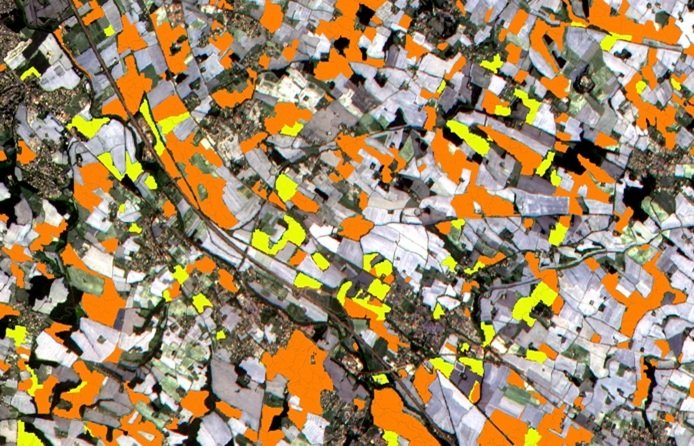 Toulouse, France, Sentinel can distinguish between two types of crops: sunflower (in orange) and maize (in yellow)