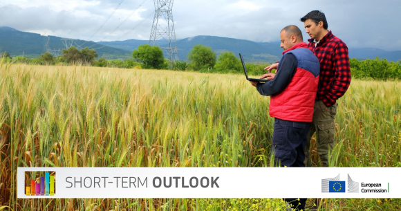 Two standing male persons looking on a laptop in a cereal field in the mountains, electric wires running over the field. Banner with short-term outlook as text and the logo of the European Commission