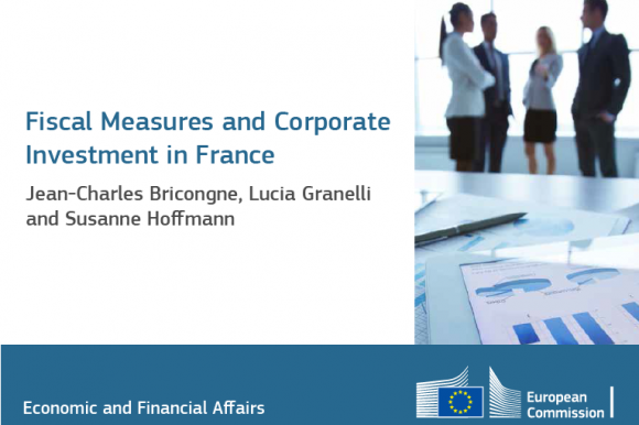 Fiscal Measures and Corporate Investment in France