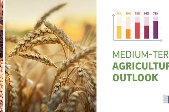 Medium-term agricultural outlook