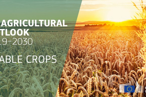 EU agricultural outlook 2019-30 arable crops