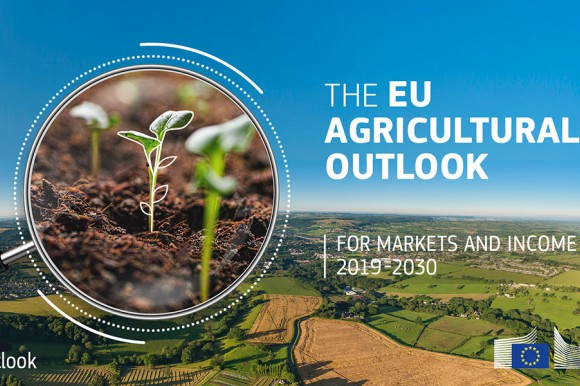 EU agricultural outlook for markets and income 2019-30