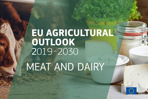EU agricultural outlook 2019-30 meat and dairy