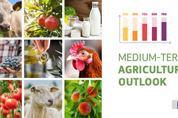 Medium-term agricultural outlook 2020