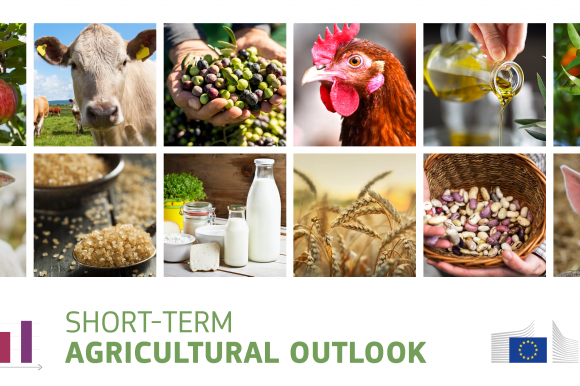 Short-term agricultural outlook