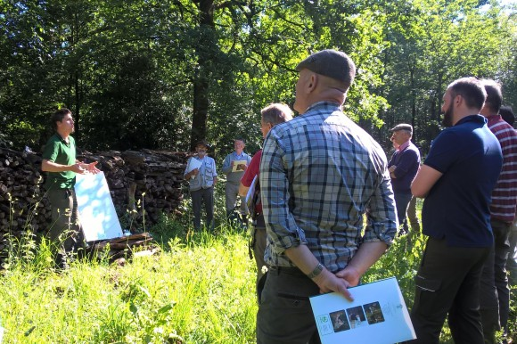 Tiges et Chavees - promoting the efficient use of woodland in Wallonia