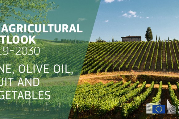 EU agricultural outlook 2019-30 wine, olive oil, fruit and vegetables