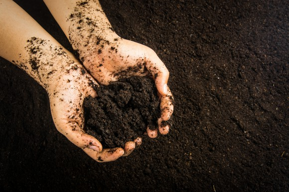 Future of CAP – Preserving our soil to protect our food