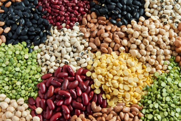 Image: Plant protein - a variety of legumes
