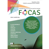 Example of FoCAS newsletter I