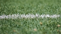 Grass from a pitch