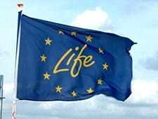 LIFE Logo flag