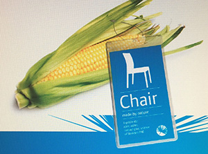 Thanks to the work being done by the Knowledge Hub Sustainable Plastics project, someday the plastic chair you are sitting on could come from such crops as maize.  ©Roelof Jansma
