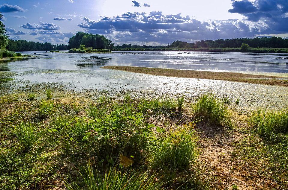 Le projet consiste à améliorer la protection des populations en cas de crue majeure de la Loire et/ou de l'Authion. ©Creative Commons
