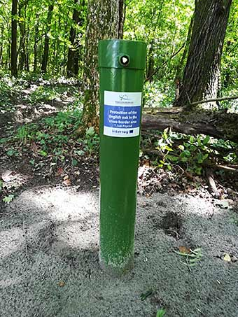 A well used to monitor the movement of underground water during the Protection of the English Oak project ©Mecsekerdő Zrt