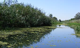 The Baja-Bezdan Canal near Bátmonostor ©Alsó-Duna-völgyi Vízügyi Igazgatóság