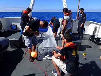 CleanAtlantic project partners collecting marine litter samples. ©Centro Tecnológico del Mar – Fundación Cetmar/CleanAtlantic project partners