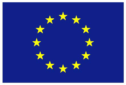 Official EU Emblem