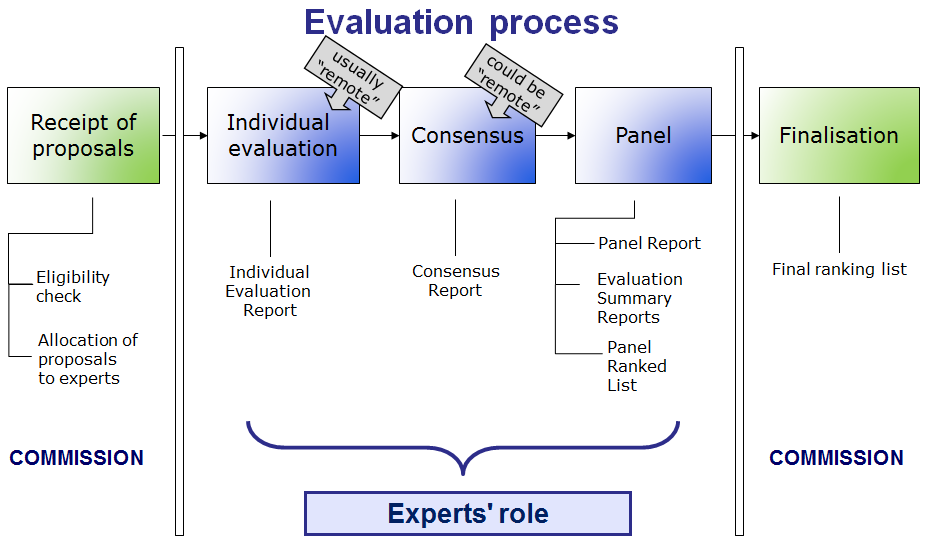 Expert's role in the evaluation process