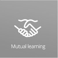 Mutual learning