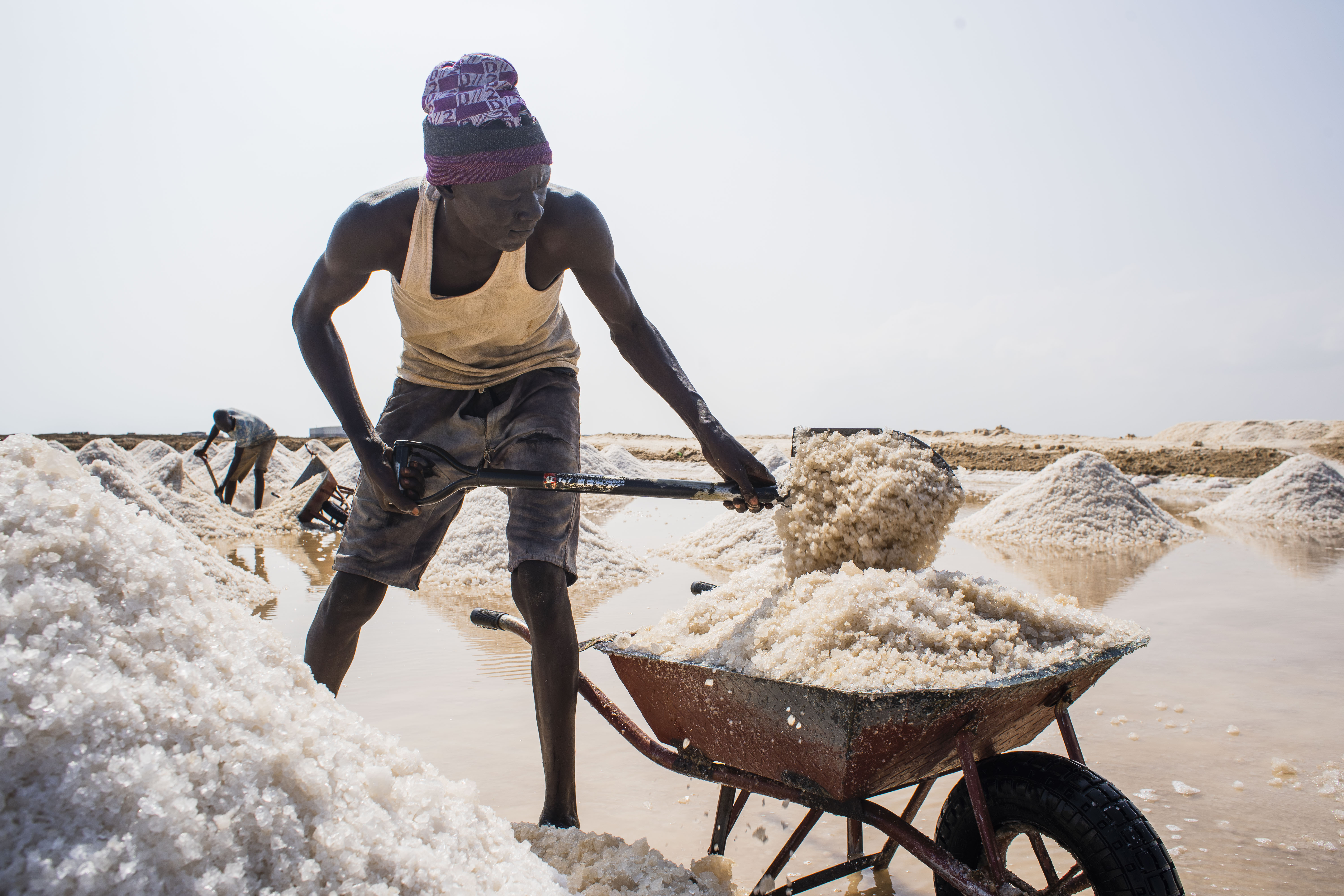 EUTF and WFP continue to support Sudan's commitment to salt