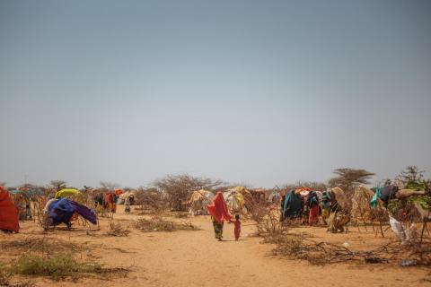 Every year, tens of thousands of migrants and refugees including many children in need of protection travel to and through the Somaliland for economic and safety-related reasons
