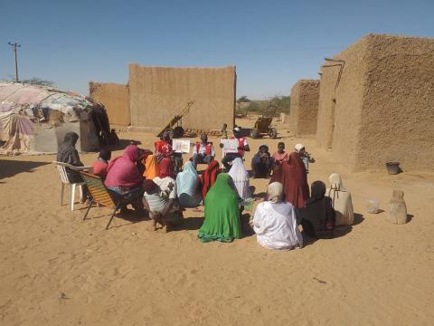 Red Cross health care provision for vulnerable people in Niger